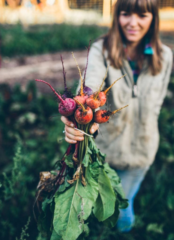Farm-Diaries-10-16